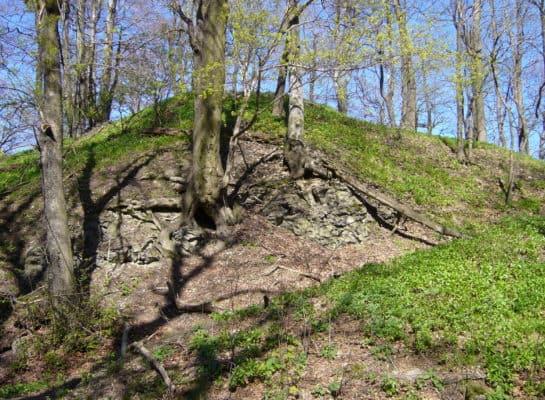 Zřícenina hradu Starý Falkenburk
